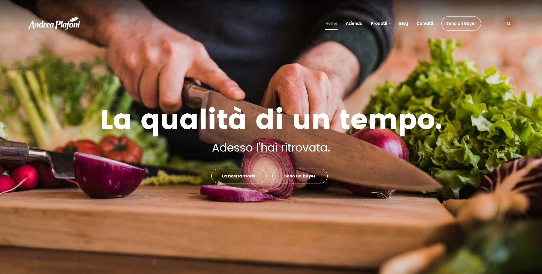 Nuovo sito per Andrea Plafoni